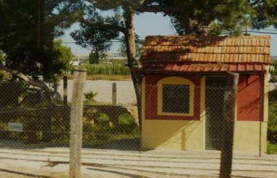 Autobús a Torrellano